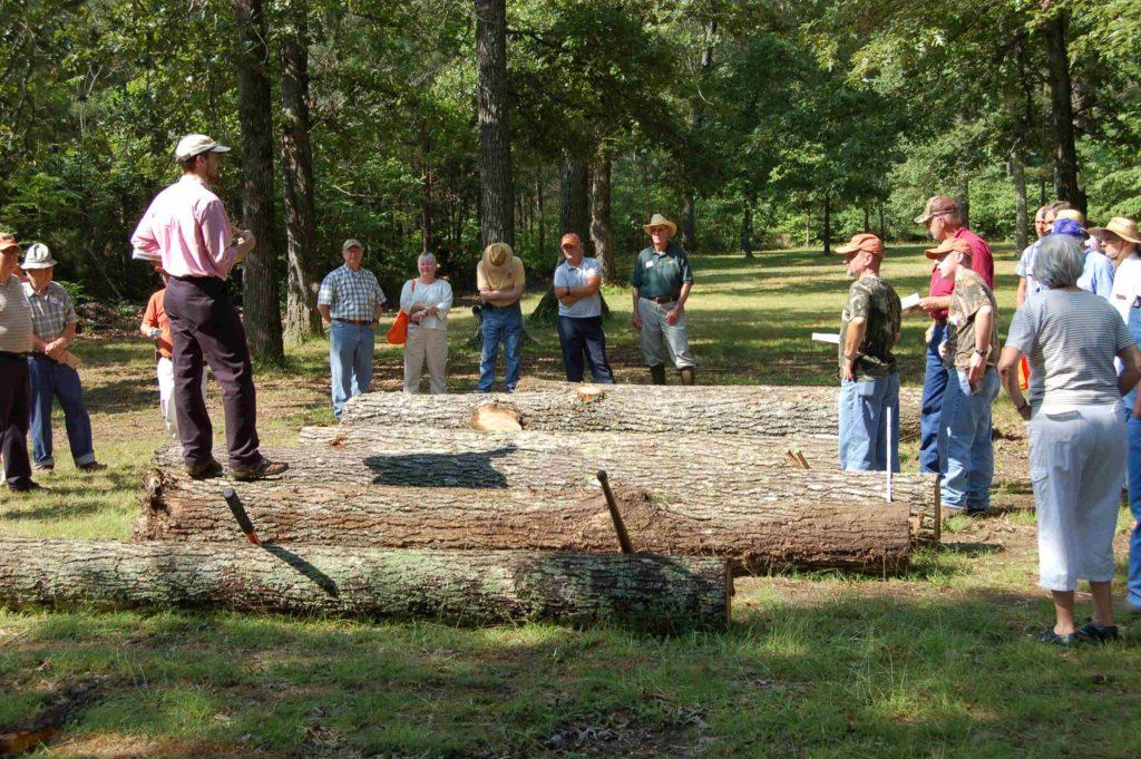 Log Grading on Cumberland Forest