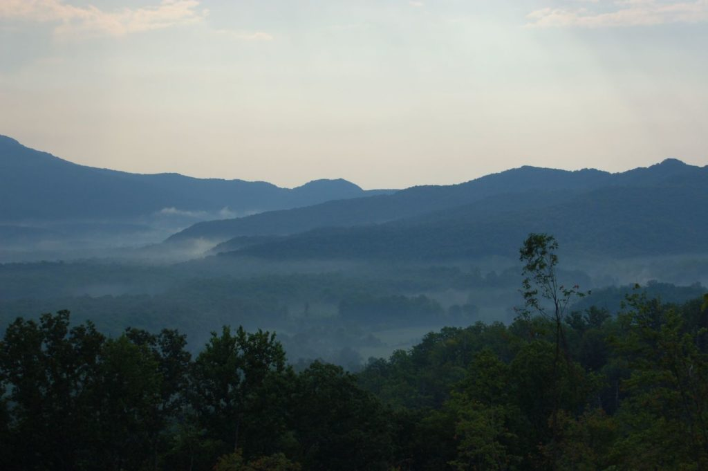 Cumberland Forest scenic view