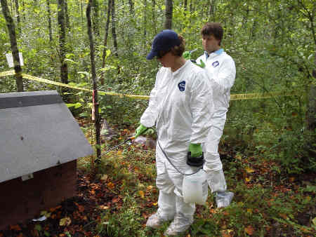 Researchers applying insecticidal spray to doghouse as part of ant control research