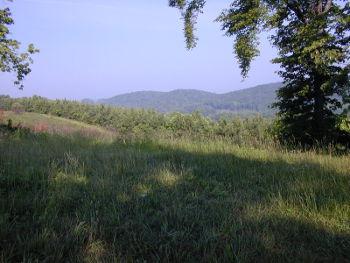 Mountain view on the Oak Ridge Forest Unit
